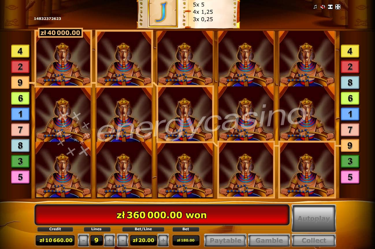 online casino slot book of ra gewinn