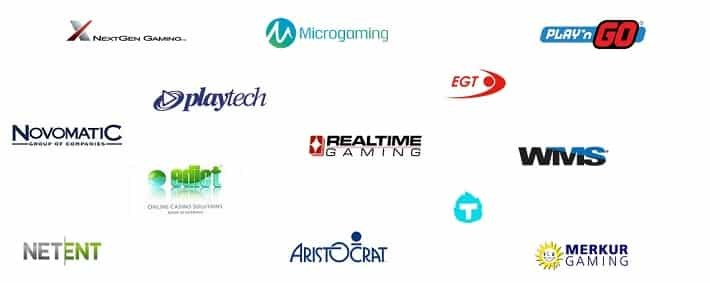Software Provider